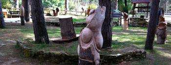 WOOD SCULPTURE CONTEST